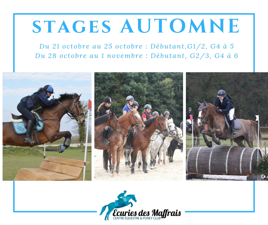 STAGE AUTOMNE